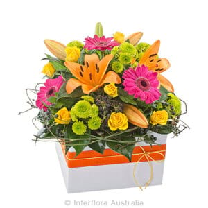 Beautiful mixed Box Arrangement