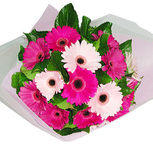 Bouquet of Pretty Gerberas
