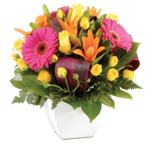Modern Posy Bowl Arrangement